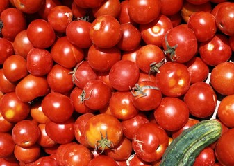 A large amount of tomatoes © Arena Photo UK