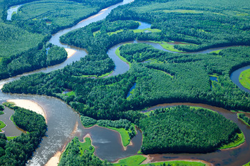 Top view of forest river