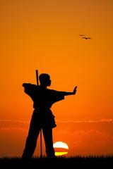 martial art at sunset
