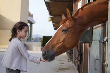 Niña dando de comer a caballo