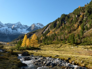 Herbst in den tiroler Bergen