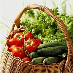 Panier tomates grappes fraîches, courgettes et salade