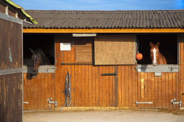 Cuadras con dos caballos