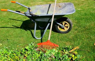 ramassage de déchets végétaux en brouette