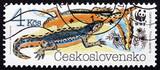 Postage stamp Czechoslovakia 1989 Alpine Newt, Amphibians poster