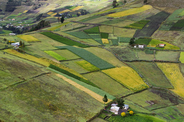 View of colorful terrace fields