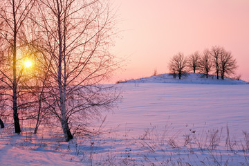 Beautiful winter pink sunrise