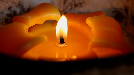 Yellow orange flower like candle close up