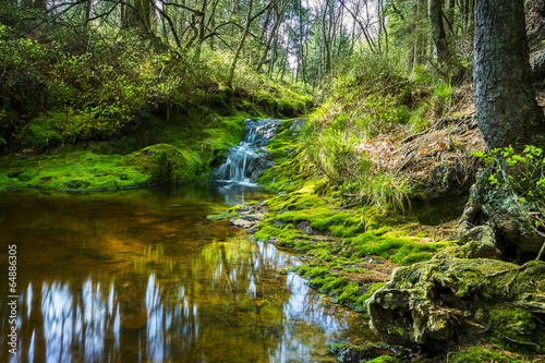 canvas print picture Hidden Pont with waterfall cascades at the hautes fagnes