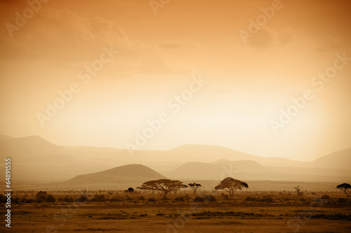 Spoed canvasdoek 2cm dik Landschappen african savannah at sunrise