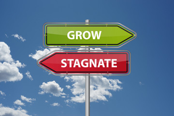 Grow or Stagnate