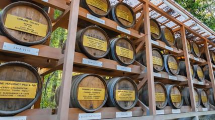 Wine Barrels Meiji jingu Shrine in Tokyo