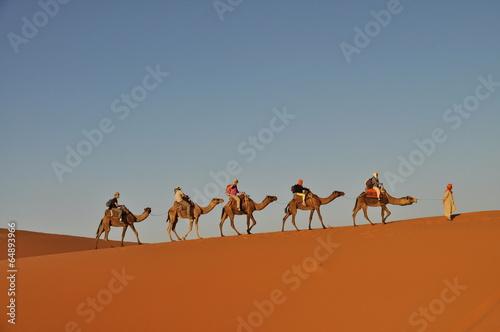 Aluminium Woestijn Camel caravan in Merzouga desert, Morocco