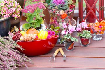 Gartenarbeit im Herbst auf der Terrasse