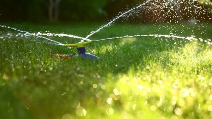 Three-way sprinkler in garden