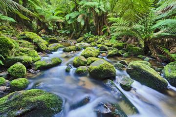 Columba creek stream horizontal