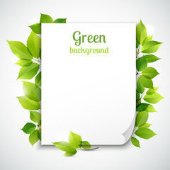 Green leaves frame template