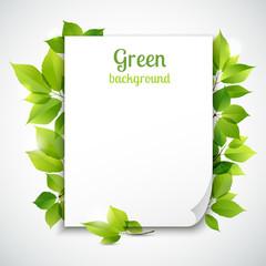 Green leaves frame template