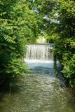 Cascata di acqua, fiume, vegetazione, natura selvaggia
