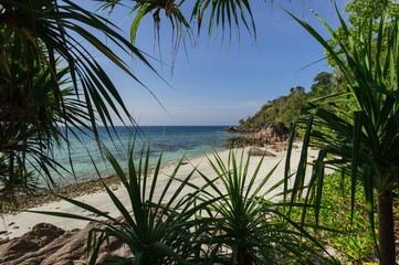 sea and the jungle on Tarutao National Marine Park southern of t