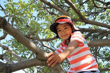 木登りする幼児(4歳児)
