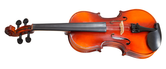 traditional wooden violin isolated on white