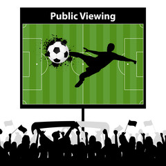 Public Viewing Monitor