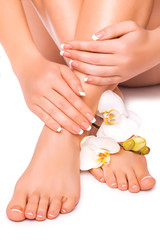 manicure and pedicure with white orchid. isolated