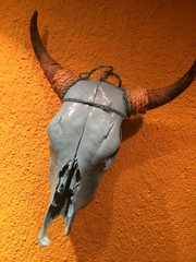 Bull scull at the wall in mexican restaurant