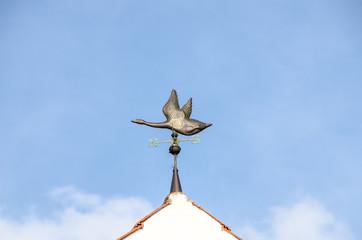 Eine Ente im Flug