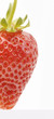 halbe Erdbeere