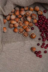 nuts and berries on the tablecloth