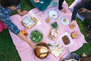 At the picnic