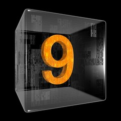 Orange nine in a transparent design box