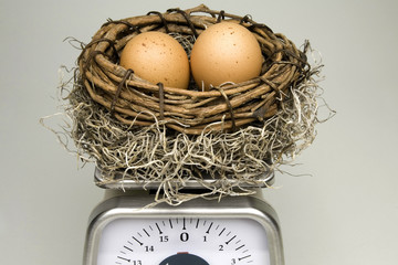 Weighing Your Nest Eggs