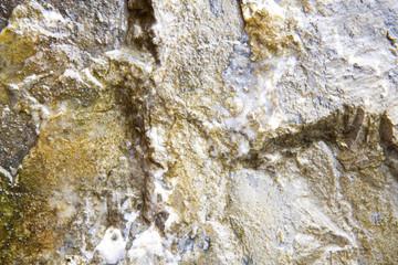 Wet Limestone Texture