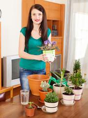 gardener with  viola plants