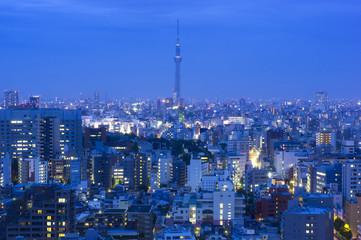 トワイライトの東京スカイツリーと東京都心の街並全体を望む
