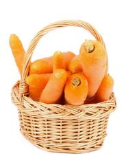 Carrot in Basket