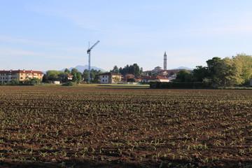 campo coltivato. Guanzate sullo sfondo