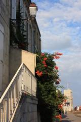 La Rochelle - Maison de ville avec fleurs