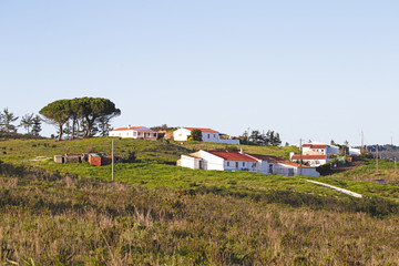 Houses in portuguese landscape