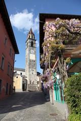 Ruelle près de l'église, san pietro e paolo + glycines.