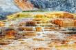 Leinwandbild Motiv Yellowstone