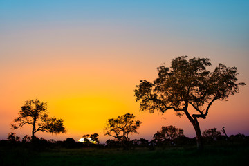 Sunset in Kruger park, South Africa