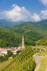 grand cru vineyard, Thann, Alsace, France
