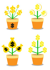 Golden coins money growth in flower pot