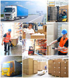 Collage logistics and freight forwarding