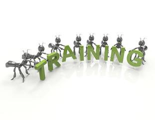 Team forming Training word