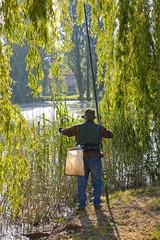 a pesca nello stagno